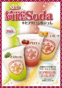 綺麗Soda +ヒアルロン酸ジュレ